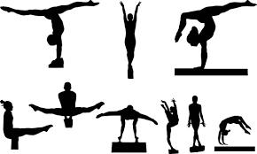 Первенство по спортивной гимнастике среди девушек @ в спортивном зале детско-юношеской спортивной школы №6 (ул. Фруктовая, д. 4)