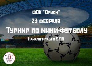 Открытый турнир по мини-футболу для молодежи, посвящённый Дню Защитника Отечества @ Орион детский оздоровительно-образовательный центр (б-р Львовский, 10а)