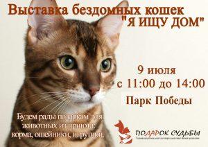"""Выставка бездомных кошек """"Я ищу дом"""" @ Парк """"ПОБЕДА"""""""