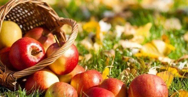 Благотворительный праздник у Дворца культуры «Руслан», посвященный Яблочному спасу