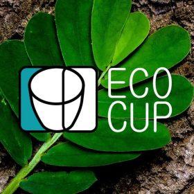 Онлайн-вебинар «Экология через культуру» от Наталья Парамонова