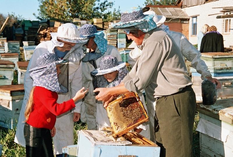 """Экскурсия """"В гости к правильным пчёлам"""""""