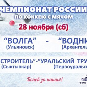 Чемпионат России по хоккею с мячом, матч