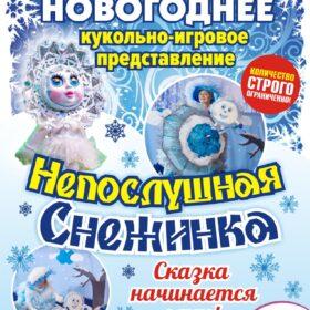 Новогоднее кукольно-игровое представление