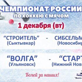Чемпионат России по хоккею с мячом матч