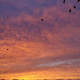Фотовыставка «Небо. Женский взгляд» , открытие