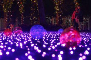 Фестиваль «Волшебных шаров» в парке «Владимирский сад» @ парк «Владимирский сад» (ул. Плеханова, 10)