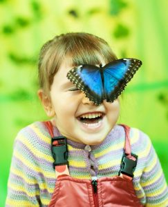 Выставка Парк живых бабочек @ ТРЦ Пушкаревское Кольцо (Московское ш., 91)
