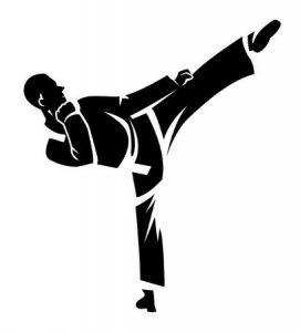 Открытый чемпионат и первенство города по каратэ WKF @ (улица Радищева, 102)