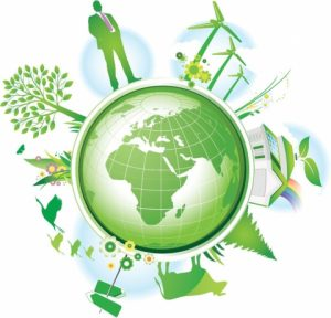 Пресс-конференция, посвящённая итогам года в сфере природы и экологии @ Региональный медиацентр (ул. Пушкинская, д. 11)