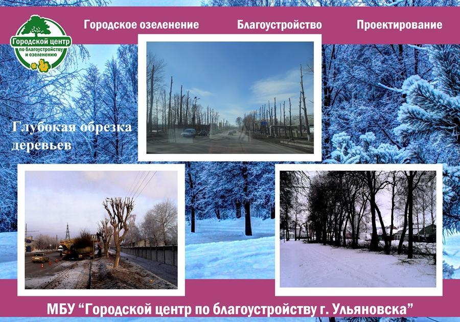 В Ульяновске расцветут тюльпаны: планы по благоустройству, фото-3
