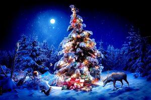 Новогодний сказочный спектакль «Новогоднее приключение» @ Концертный зал МБУК «Руслан»