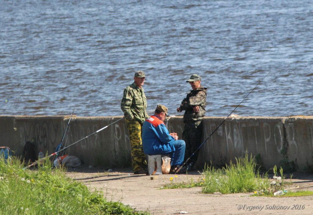 где в ульяновске клюет рыба