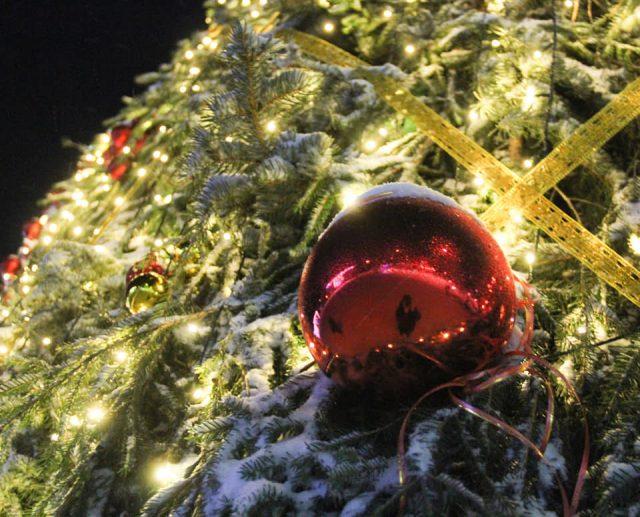 Программа резиденции Деда Мороза