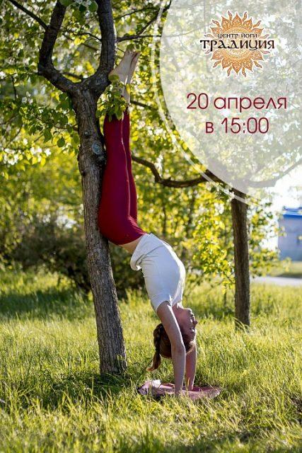 Мастер-класс по йоге «Стойка на руках» @ Традиция,  центр йоги (ул. Дворцовая, 7а)