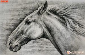 Мастер-класс Лошадь в дымке @ Леонардо хобби-гипермаркет( Московское шоссе, 108)