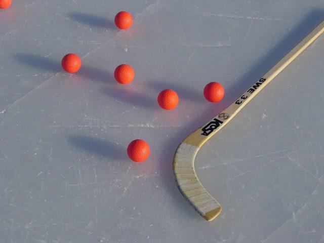 Фестиваль русского хоккея @ Волга-Спорт-Арена | Дворец Спорта |Октябрьская улица, 26Б