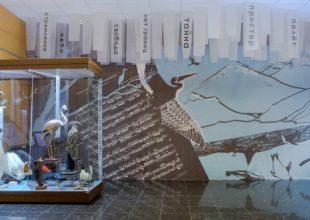 Открытие выставки из Государственного Дарвиновского музея (Москва) «Птицы. Технология совершенства»