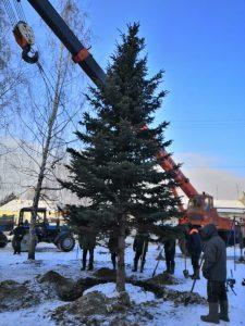 Социально-экологический проект «Ёлочкина школа» @ в лицее № 40 (ул. Куйбышева, 3)