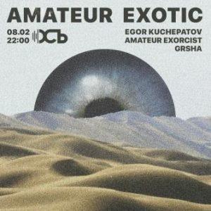 Выступление Amateur Exotic в клубе ОСЬ @ клуб ОСЬ (улица Гончарова, 21А/10)