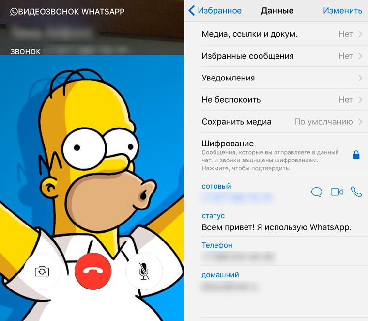 WhatsAppVidIn2