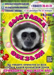 """Выставка обезьян @ ТЦ """"Энтерра"""" (ул. Радищева, д. 39)"""