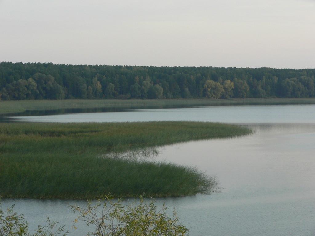 фото 1- Березовский залив правый берег