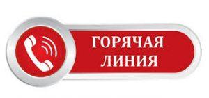Горячая линия в Отделении ПФР по вопросам индексации ежемесячной денежной выплаты  (ЕДВ)