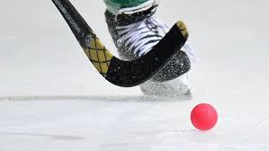 Соревнования по хоккею с мячом  между школьниками Железнодорожного района, финал @  на стадионе «Локомотив» (пр-т Гая, 15)