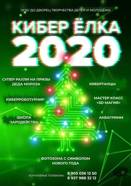Новогоднее шоу «Кибер ЁЛКА - 2020» @ Дворец творчества детей и молодёжи (ул. Минаева, 50)