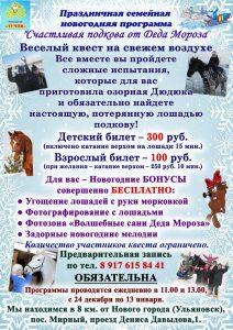 Новогодняя семейная программа «Счастливая подкова от Деда Мороза» @ пос. Мирный, проезд Д.Давыдова 1