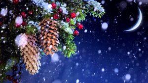 Литературно-музыкальная гостиная «Рождество в ожидании чудес» @ ДК «Киндяковка», просп. Гая, 15