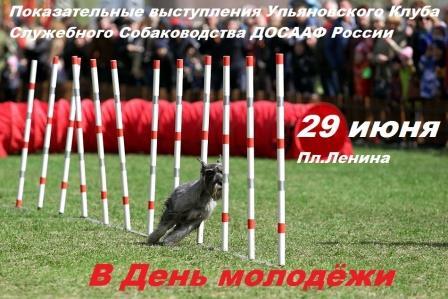 Показательные выступления клуба служебного собаководства ДОСААФ @ Площадь Ленина