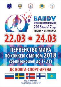 Первенство мира по хоккею с мячом 2018 @ Волга-Спорт-Арена (ул. Октябрьская 26. стр. 1)