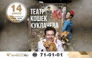 Выступление Театра кошек Куклачева @ Дворец «Губернаторский»